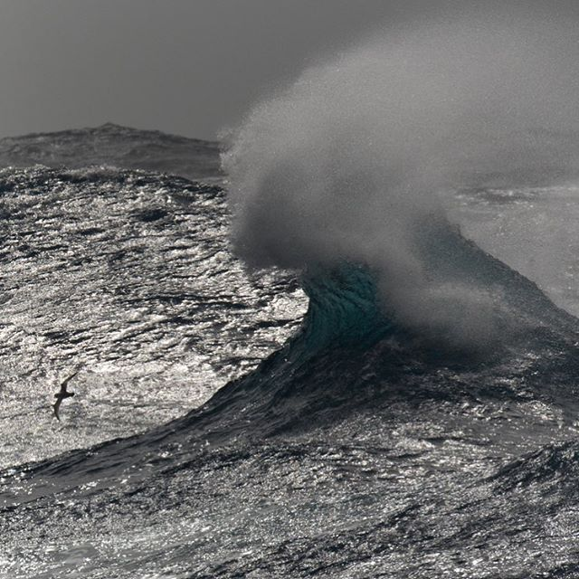 A formidable wave.